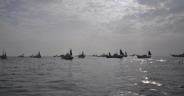 朝の剣崎沖の船団の群れ!