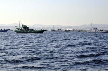 最近はこの場所が釣れてるのでに遊漁船が集まっている