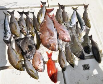 大島万歳  大漁万歳  大島に感謝