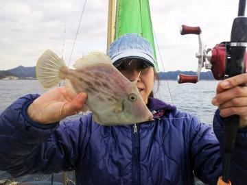 28cmのカワハギを釣り上げ超ゴキゲン!!!