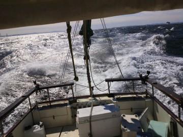 木更津沖のブイでUターン