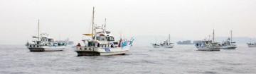 乗っこみのマダイを狙って三浦の先端松輪の船も久里浜に集結していた