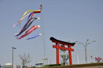 羽田神社の鯉のぼり・・・もうすぐ連休ですネ