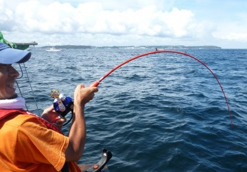必死に竿をためるがなかなかリールが巻けずドラッグから糸が・・・