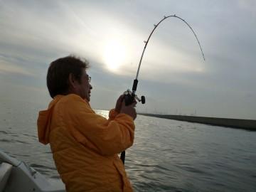 川崎の新堤の際で・・・細い竿がしなりリールも巻けない・ラインは100mも出ているのに