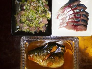 アジのタタキにシメサバ、サバの味噌煮