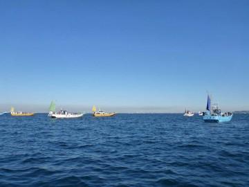 カワハギを求めて多くの船が集まる竹岡沖