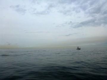 今日の中の瀬は釣り船が見当たらずプレジャーが1隻