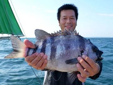 まずはデカイ50cmの石鯛を村田さんが釣り上げる