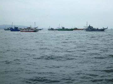 観音沖のタチウオの船団! 今日はまばらに・・・