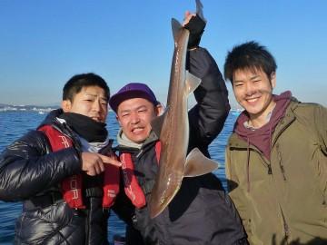 何とサメ!!!!