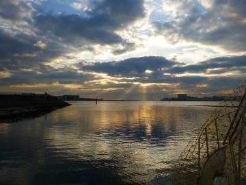 穏やかな海老取川から多摩川へ