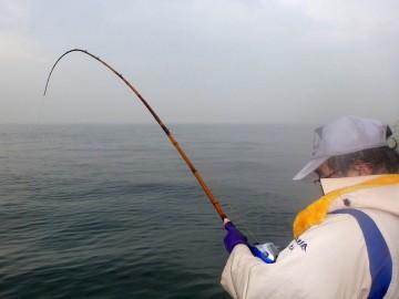 全く廻りが見えません・・・黒鯛の引きで頑張ってますが残念!