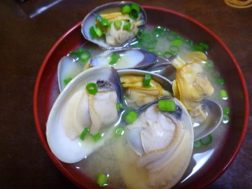贅沢に蛤とアサリのみそ汁・・・最高!!!!
