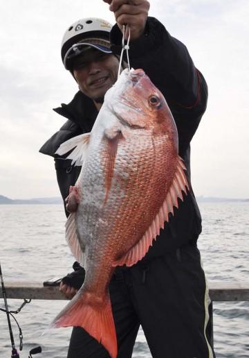 綺麗なマダイ・・・2.51kg素晴らしい!!!!