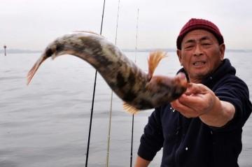 久しぶりに釣れたアイナメ・・・35cm