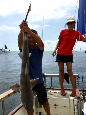 おまけに1.5mのサメ・・・PE1号で格闘しました