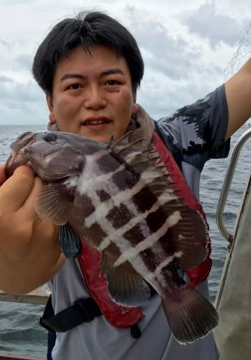 珍しい高級魚マハタが・・・!