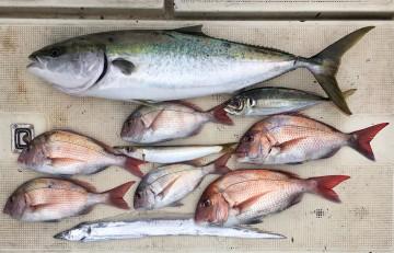 外道も多く魚種が豊富でした・・・!