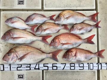 4.36kg2.42kg2.35kg2.05kg1.65kg1.25kg 1kg未満が3枚 計9枚