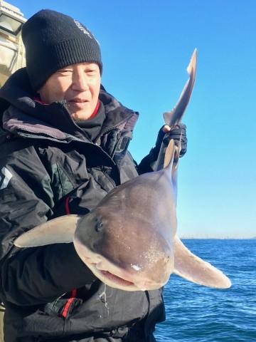 1時間のファイトで上がったのは130cmのサメ・・・残念!