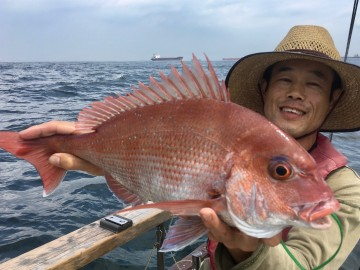 やっときました・・1.58kg綺麗なピンク・・神戸さん よかった!!!