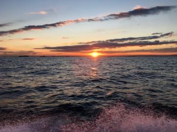穏やかな海の日の出とともになんか・・・!