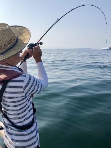 最初に竿がしなり・・・いい感じに突っ込んでる・・・が 特大のサメでした・・残念!