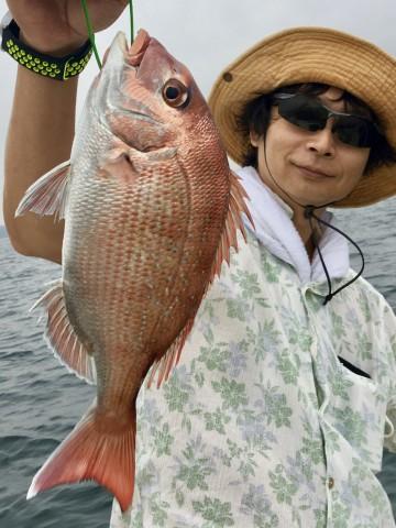 小泉さん・・・綺麗なピンク・・・600g