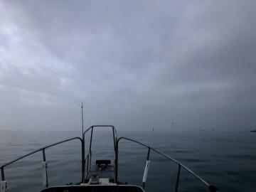 出船して多摩川を出ると2マイル先が見えない・・・!