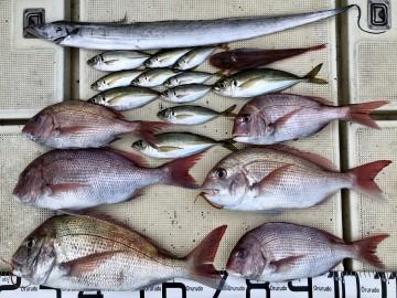 釣果です・・・!