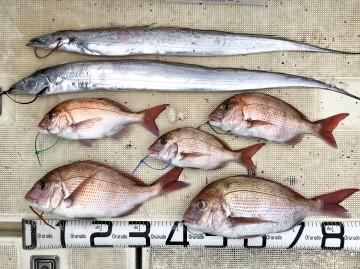 釣果です・・・・