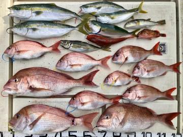 色々釣れた釣果です・・・!